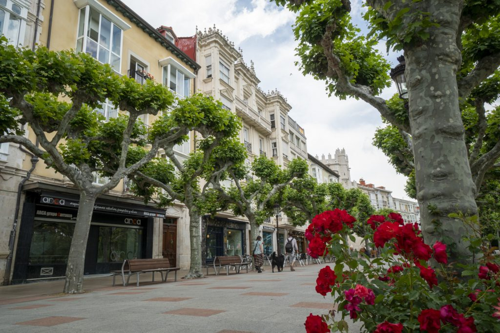 Burgos-Turismo_18